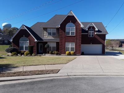 Smyrna Single Family Home For Sale: 1007 Skinner Drive