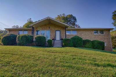 Davidson County Single Family Home For Sale: 7528 Lakeview Dr