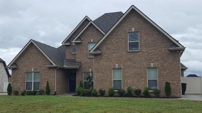 Rutherford County Single Family Home For Sale: 1 Cedar Retreat