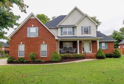 Smyrna Single Family Home For Sale: 313 Andy Johns Dr