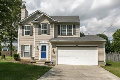 Smyrna Single Family Home For Sale: 306 Hunters Chase Dr