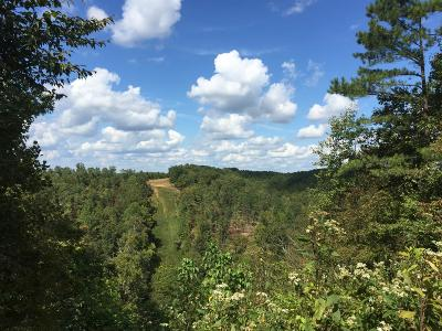 Lawrenceburg Residential Lots & Land For Sale: Blowing Springs Rd