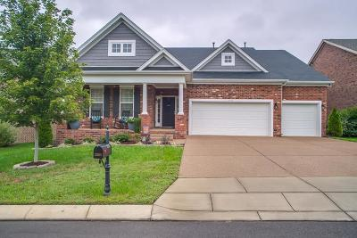 Mt Juliet Single Family Home For Sale: 3113 Oxford Dr