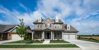 Single Family Home For Sale: 133 Ashington Circle #112