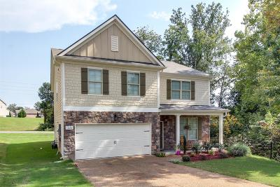 Spring Hill Single Family Home For Sale: 3028 Alan Dr