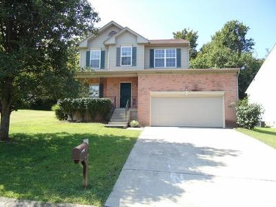 Nashville Single Family Home For Sale: 1603 Berrywood Way