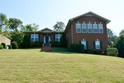 Smyrna Single Family Home For Sale: 612 Excalibur Ct