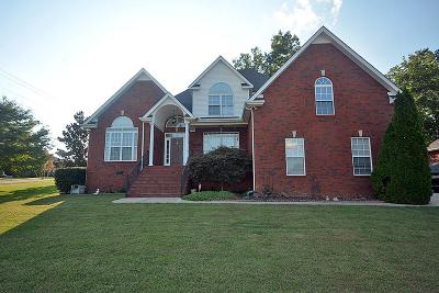Smyrna Single Family Home For Sale: 8001 Vineyard Ln