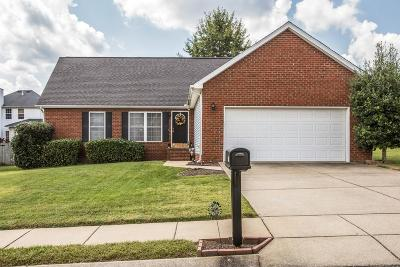 Spring Hill Single Family Home For Sale: 1309 Chapman Ct
