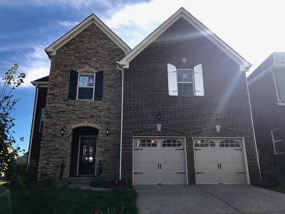 Sumner County Single Family Home For Sale: 148 Grindstone Drive - Lot 538
