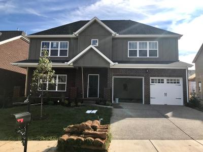 Sumner County Single Family Home For Sale: 144 Grindstone Drive - Lot 537