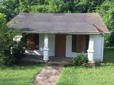 Mount Pleasant Single Family Home For Sale: 204 Arrow Mines Rd