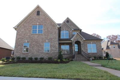 Mount Juliet Single Family Home For Sale: 3022 Nichols Vale Lane #113