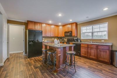 Spring Hill Single Family Home For Sale: 1142 Wrights Mill Rd