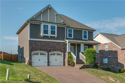 Davidson County Single Family Home For Sale: 9004 Macauley Lane
