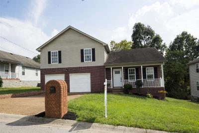 Davidson County Single Family Home For Sale: 4520 Highland Ridge Dr
