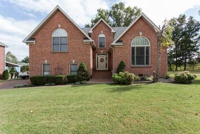 Davidson County Single Family Home For Sale: 1317 Fishers Meadows Cv