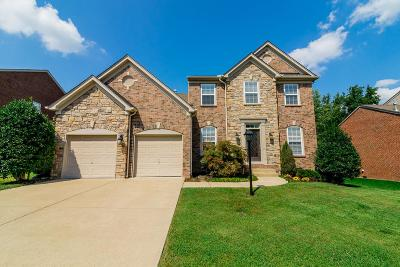 Mount Juliet Single Family Home For Sale: 408 Landings Way