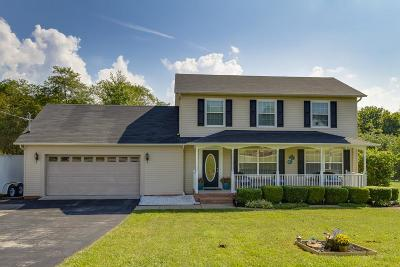 Spring Hill Single Family Home For Sale: 300 Lauren Ct
