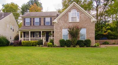 Nashville Single Family Home For Sale: 8421 Beautiful Valley Dr