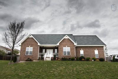 Clarksville Rental For Rent: 1394 Langdale Drive