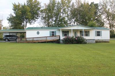 Mcewen Single Family Home For Sale: 8849 Us Hwy. 70