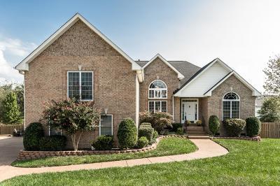 Hendersonville Single Family Home For Sale: 107 Ashford Ct