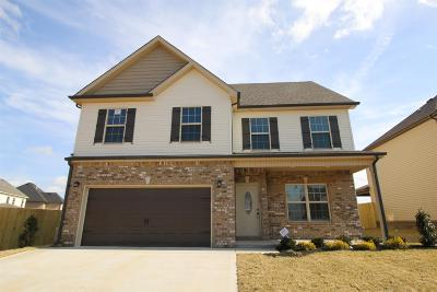 Clarksville Single Family Home For Sale: 101 Summerfield