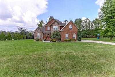 Smyrna Single Family Home For Sale: 1001 Idealist Ct