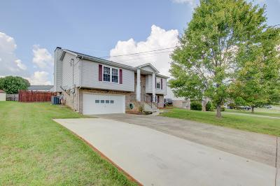 Christian County, Ky, Todd County, Ky, Montgomery County Single Family Home For Sale: 2130 Amadeus Dr