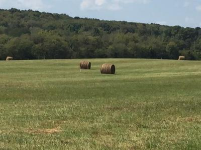Lebanon Residential Lots & Land For Sale: 3 Sparta Pike