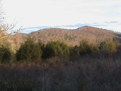 Dekalb County Residential Lots & Land For Sale: 323 Green Hill Rd
