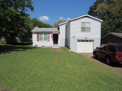 Davidson County Single Family Home For Sale: 221 Warrior Rd