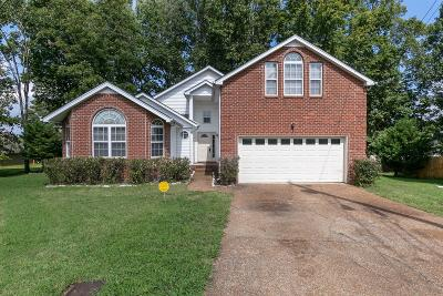 Davidson County Single Family Home For Sale: 516 Waterford Pl