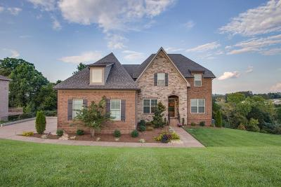 Mount Juliet Single Family Home For Sale: 130 Paddock Place Dr