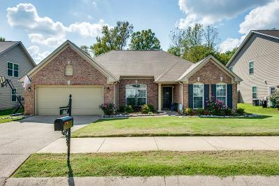 Spring Hill  Single Family Home For Sale: 1067 Countess Ln