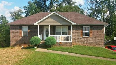 Christian County, Ky, Todd County, Ky, Montgomery County Single Family Home For Sale: 3164 Brook Hill Dr