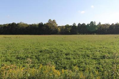 Residential Lots & Land For Sale: 4200 Alsup Mill Rd