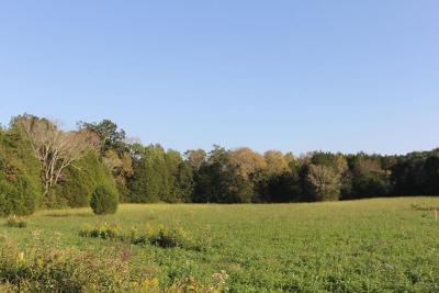 Residential Lots & Land Under Contract - Showing: 4220 Alsup Mill Rd