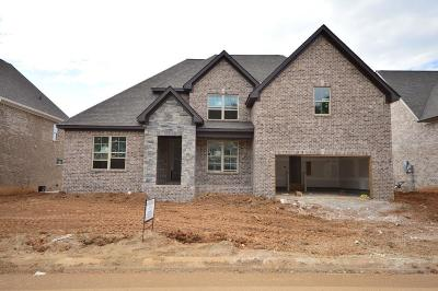 Spring Hill  Single Family Home For Sale: 4019 Haversack Drive (313)