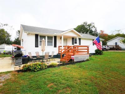 Smyrna Single Family Home For Sale: 619 Drew St