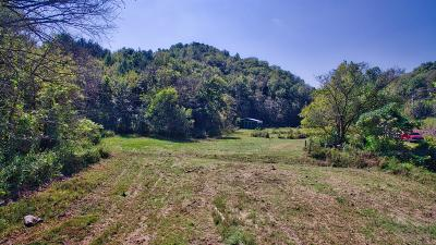 Woodbury TN Residential Lots & Land For Sale: $279,900