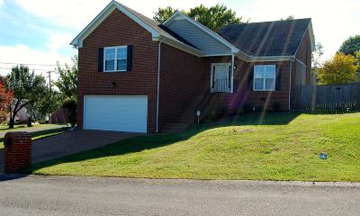 Hendersonville Single Family Home Under Contract - Showing: 201 Breakwater Dr