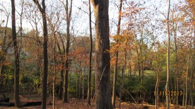 Hendersonville Residential Lots & Land For Sale: Lakeside Park Drive