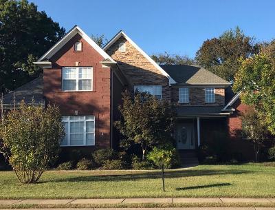 Spring Hill  Single Family Home For Sale: 1058 Auldridge Dr