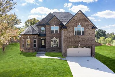 Clarksville Single Family Home For Sale: 126 Bentley Meadows