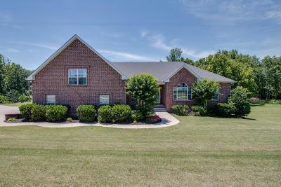 Lebanon Single Family Home For Sale: 3033 Trice Place