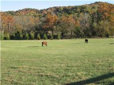 Franklin Residential Lots & Land For Sale: 4336 Peytonsville Trinity Rd P1