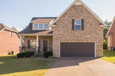Smyrna Single Family Home For Sale: 3815 Masters Dr