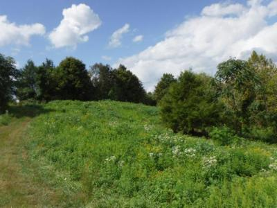 Dekalb County Residential Lots & Land For Sale: 10 .90 Ac. Ford Road